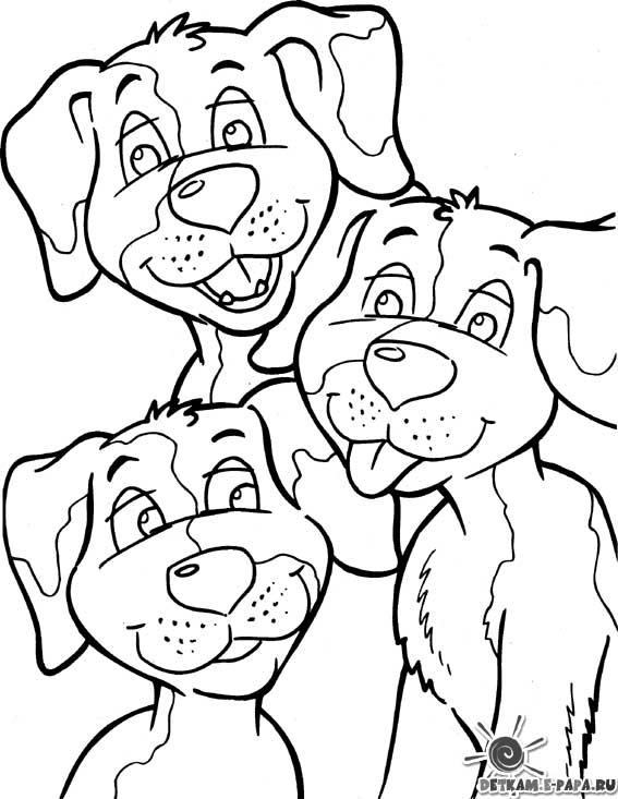 Kleurplaten Honden Poezen.Kleurplaten Honden En Poezen Kleurplaten Poezen En Honden