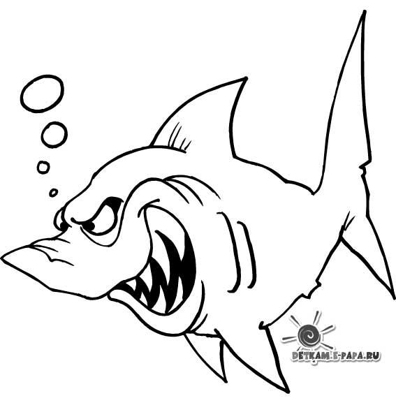 Disegni da colorare per bambini squalo for Immagini squali da stampare