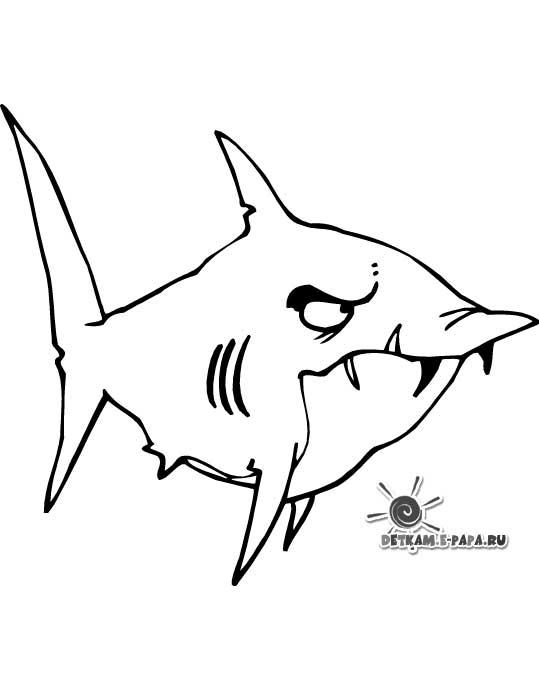 Disegni da colorare per bambini squalo for Disegni di pesci da colorare