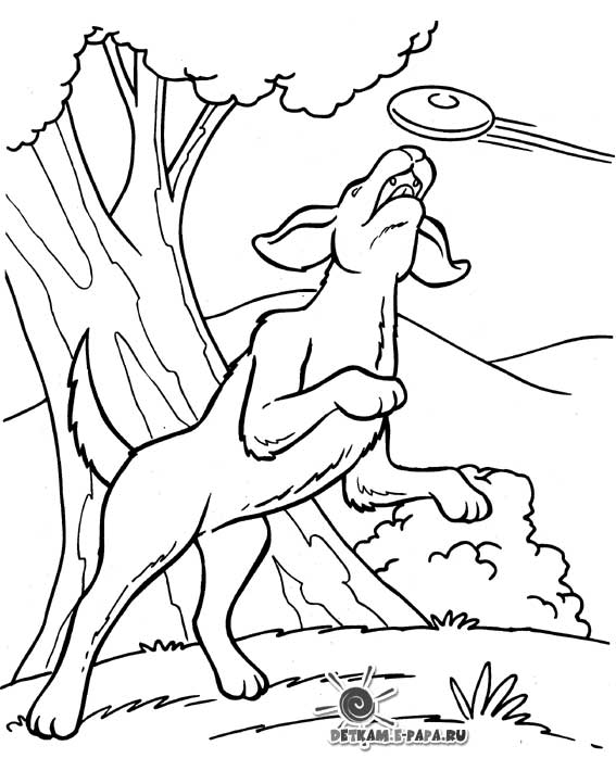 Eccezionale Disegni da colorare per bambini Disegno di cani TV09