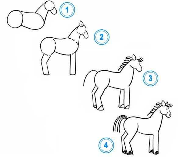 Come Disegnare Un Cavallo Come Disegnare Gli Animali Come Disegnare