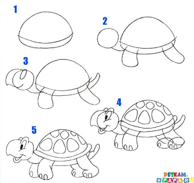 abbastanza Come disegnare una tartaruga Come disegnare gli animali. Come  IN03