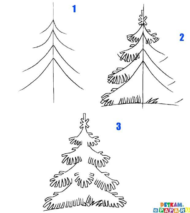 Come Disegnare Un Abete Come Disegnare Gli Alberi Come Disegnare